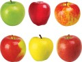 Classic Accents Variety Pack, Apples